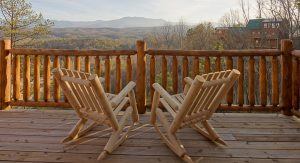 vacation rentals -bear safety