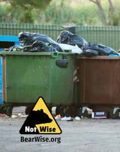 overflowing dumpsters