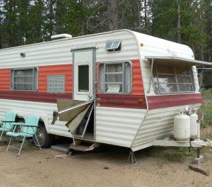 camper damage by black bear